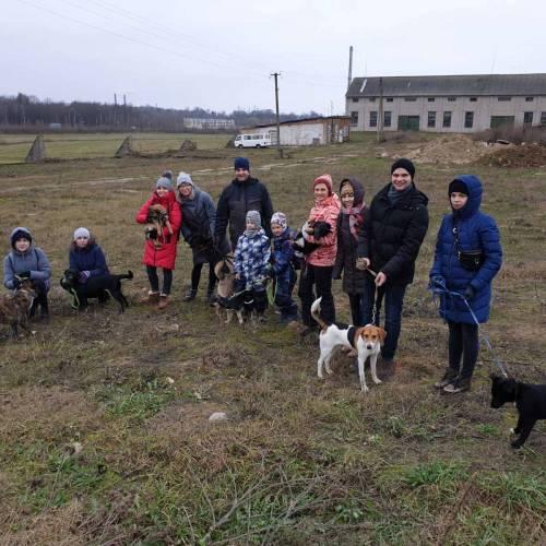 Команда ЭтикетСервис посетила дом для бездомных собак